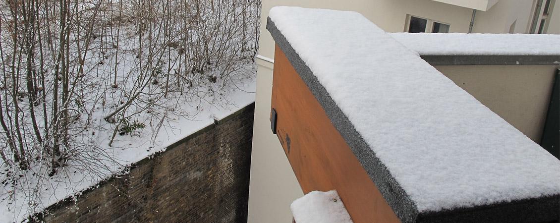 BienenBox im Winter